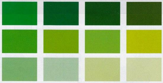 Tant 15x15cm 12 nuance de vert - Nuance de vert peinture ...