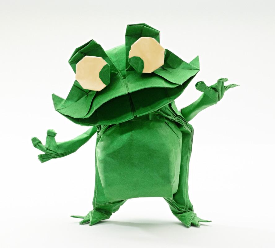 frog nicolas terry