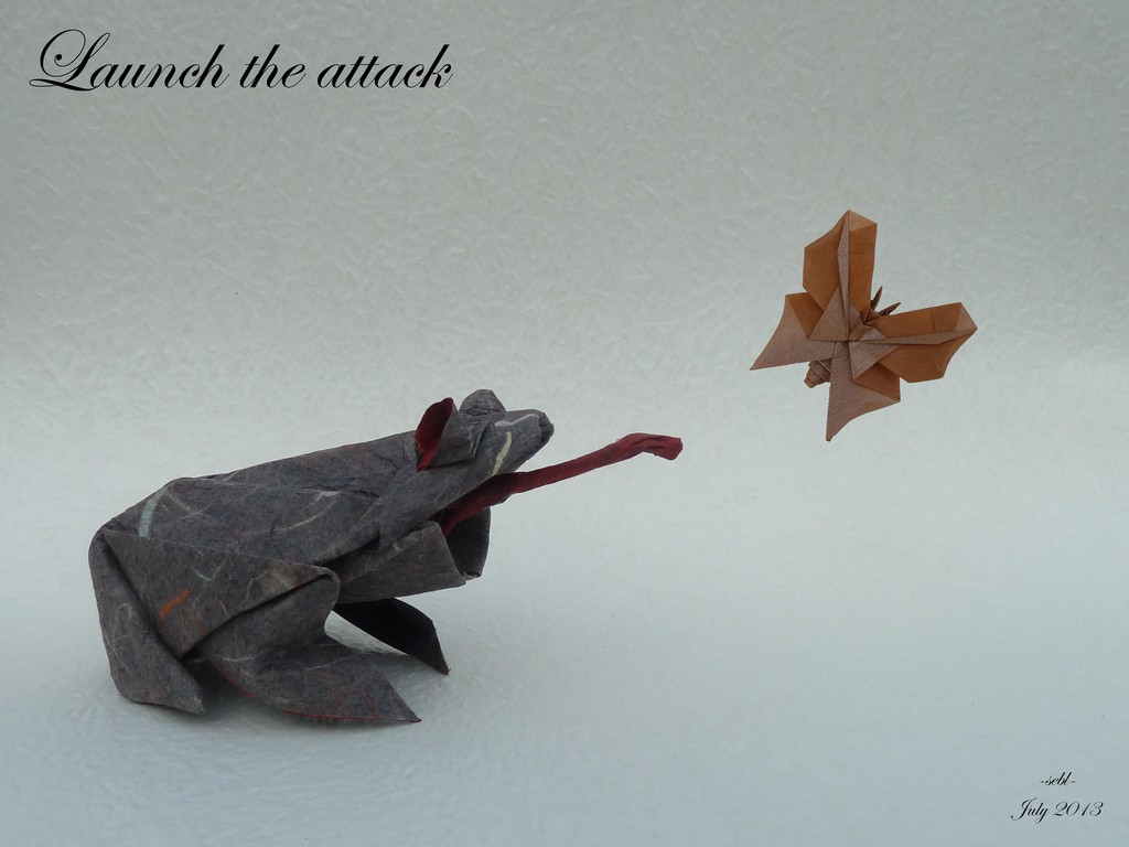 Duo momigami papers 25x25 cm - Origami grenouille sauteuse pdf ...