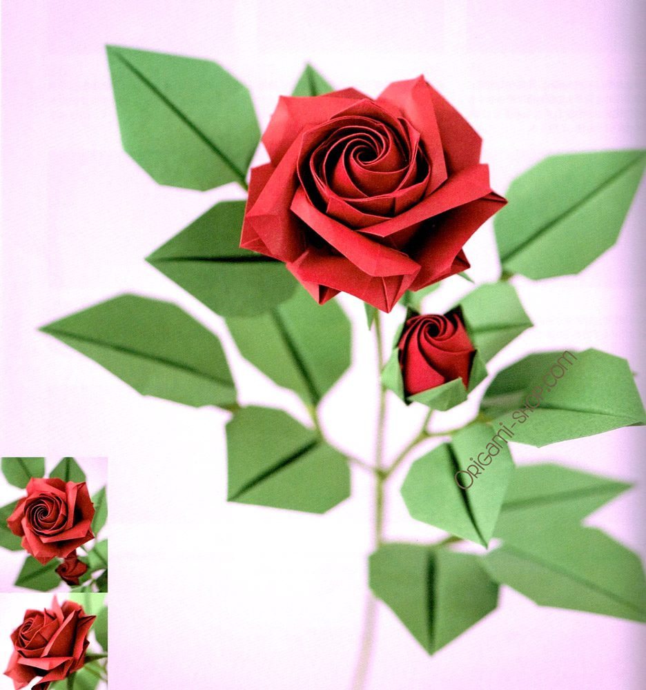 book origami roses and flowers by naomiki sato dvd