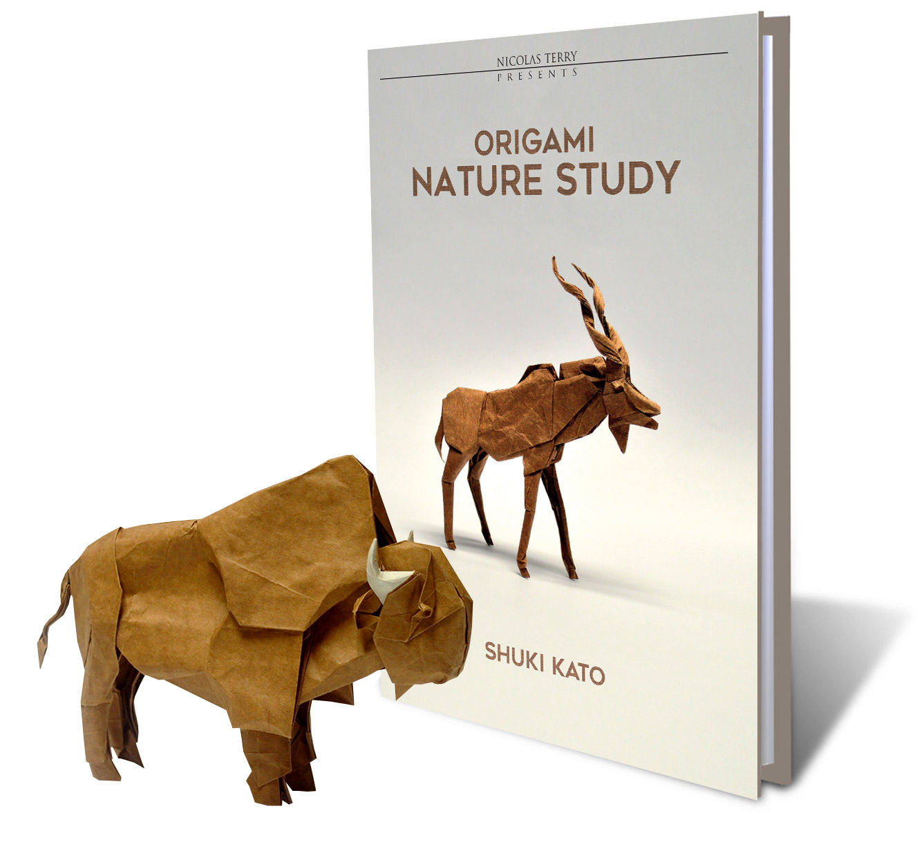 #9 Origami Nature Study [Pre-order + Free Unpublished Diagram]