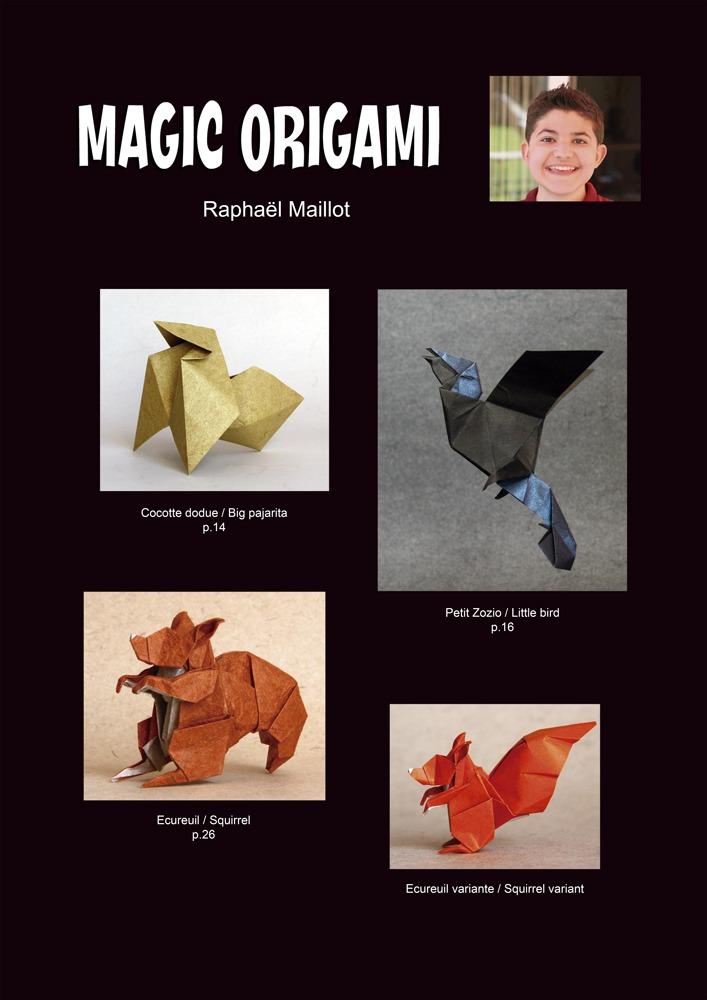 """Résultat de recherche d'images pour """"raphaël Maillot origami"""""""