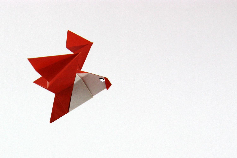 Https Chat Origami Diagramme Gratuit Xml Cat Diagram Free 1