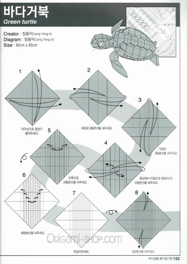 Turtle Origami | 846x600