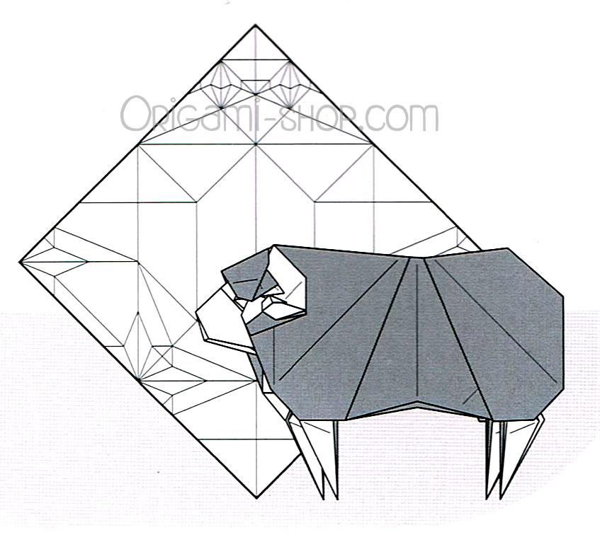 Httpswww Origami Shop Comkorea Origami Convention 2016 Xml