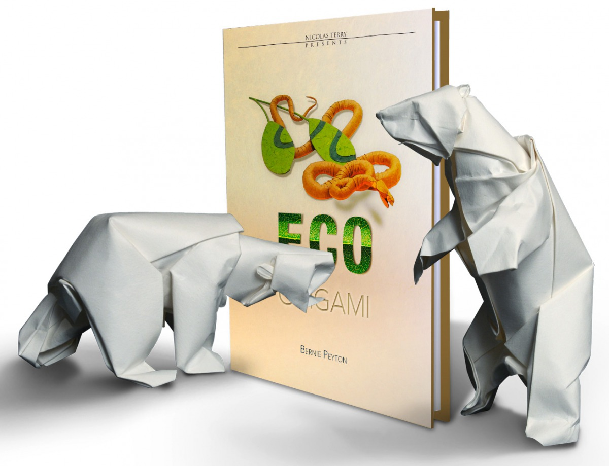 6 eco origami publication end 2012 6 eco origami cd rom jeuxipadfo Image collections