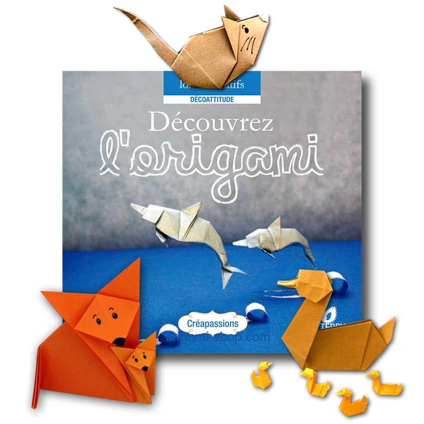 Decouvrez L Origami Documentaire Photos Modeles A Plier Dedicace De L Auteur Possible