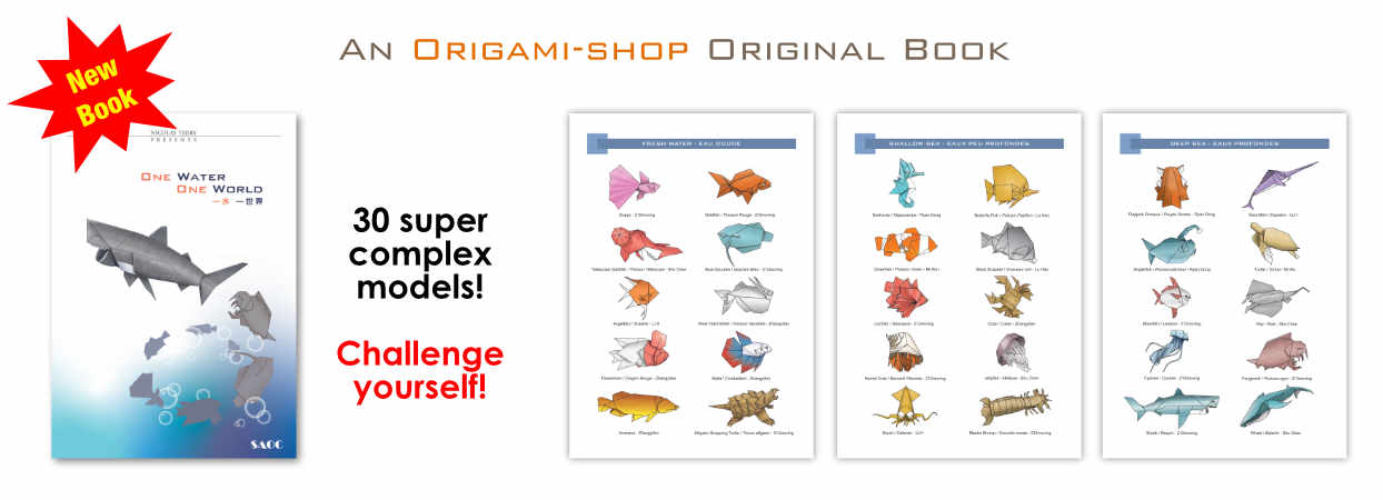 Surprising Everything For Origami Books Papers And Instructions For Beginners Wiring Digital Resources Jonipongeslowmaporg
