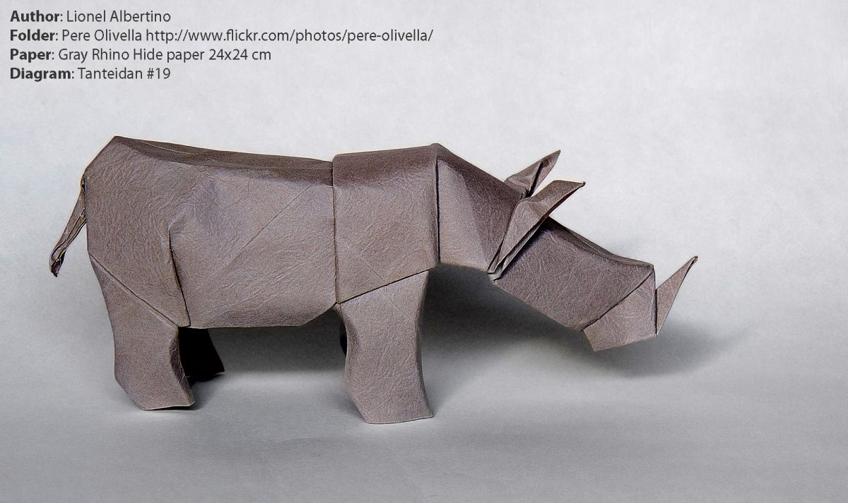 1406887377albertino-rhino-by-pere-olivella-with-rhino-hide-paper