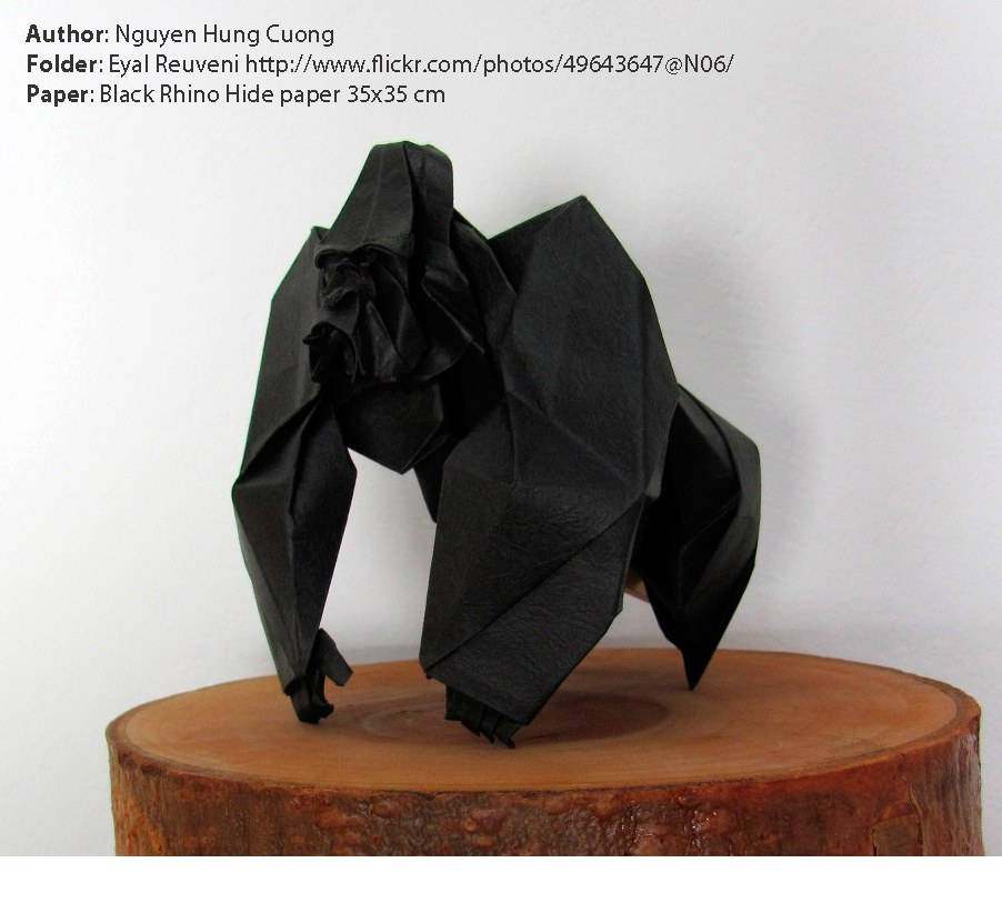 1406887384black-rhino-hide-paper-with-gorilla