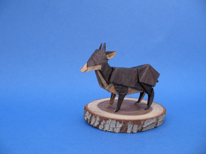 Quentin Trollip's Southern Pudu by Eyal Reuveni http://www.flickr.com/photos/49643647@N06/